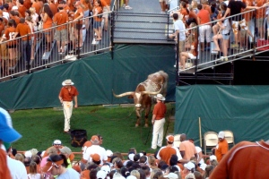 9/1/2007: In his new corner by the south endzone stands, DKR