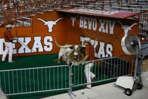 9/3/2011: Chillin' with his personal Chill Zone at the home opener versus Rice, DKR