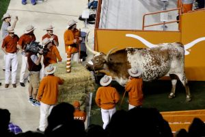 11/27/2014: Celebrating Bevo's 98th anniversary during the Thanksgiving game against TCU, DKR
