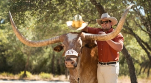 10/13/2015: We're so glad Bevo got to try on the Golden Hat one last time. (photo via UT Athletics