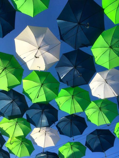 14_umbrellas