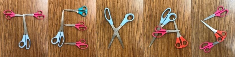 01_texas-scissors